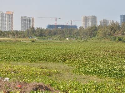 Đà Nẵng thúc tiến độ dự án khơi thông sông Cổ Cò